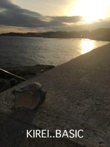 たたら浜と貝殻
