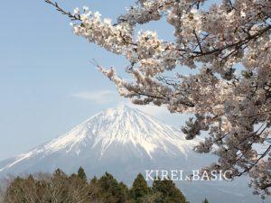 白糸の滝周辺 富士山と桜