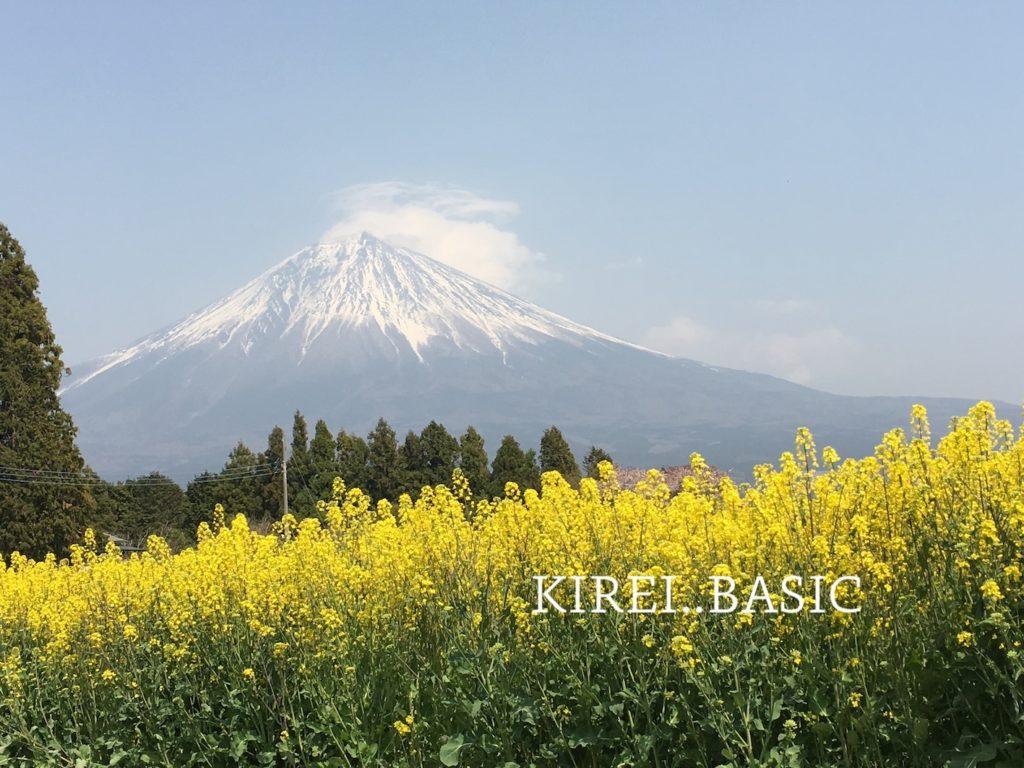 白糸自然公園から見える富士山と菜の花