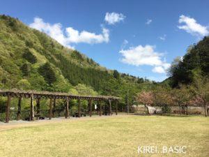 小金沢公園はキャンプにおすすめ。芝生が広いです。