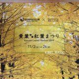 昭和記念公園 黄葉・紅葉まつり