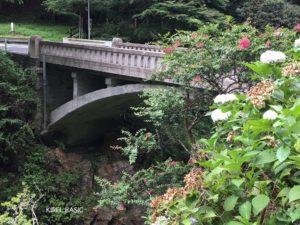 蝉の渓谷にある橋
