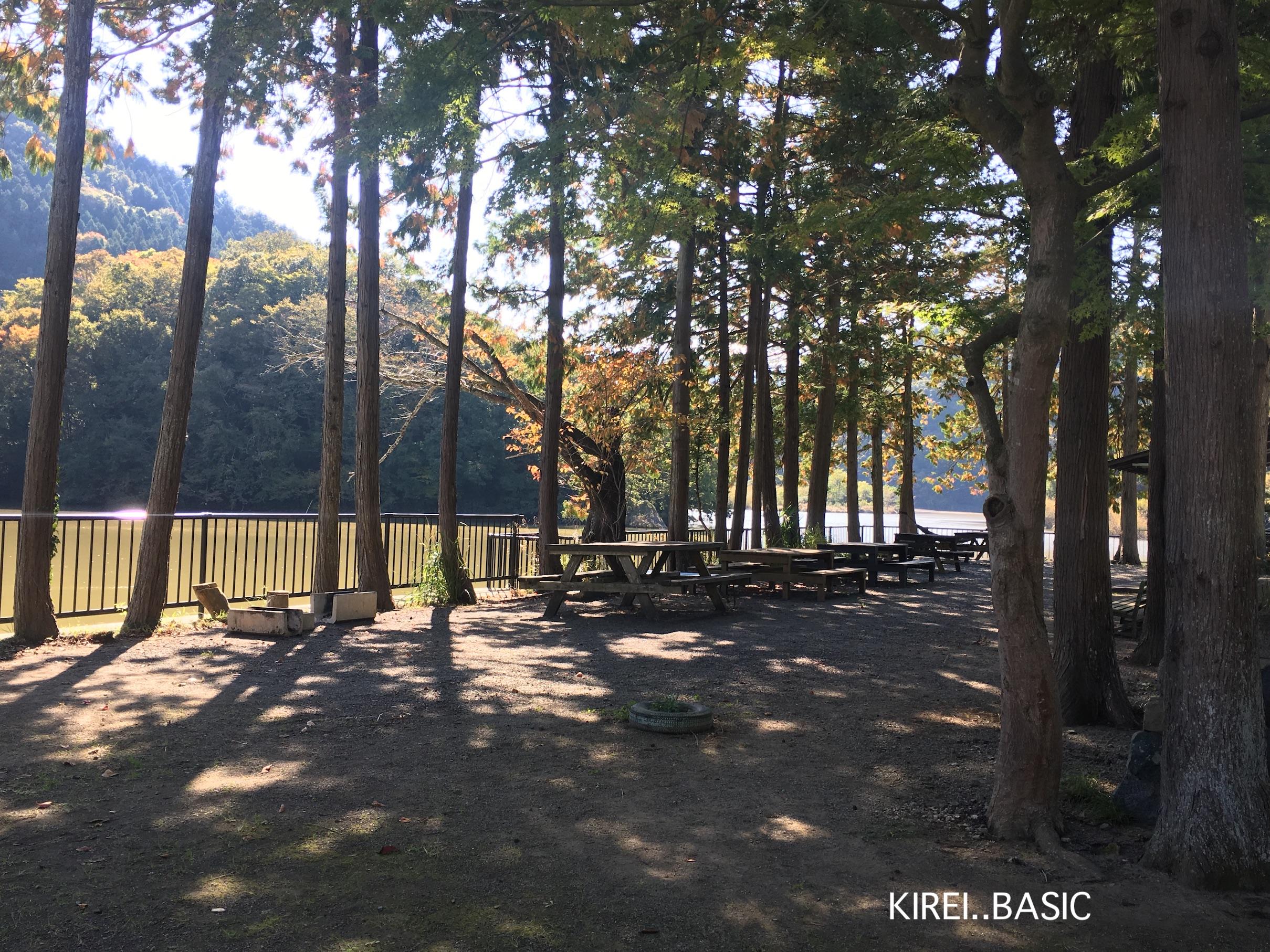 秋山川キャンプ場の川沿いエリア