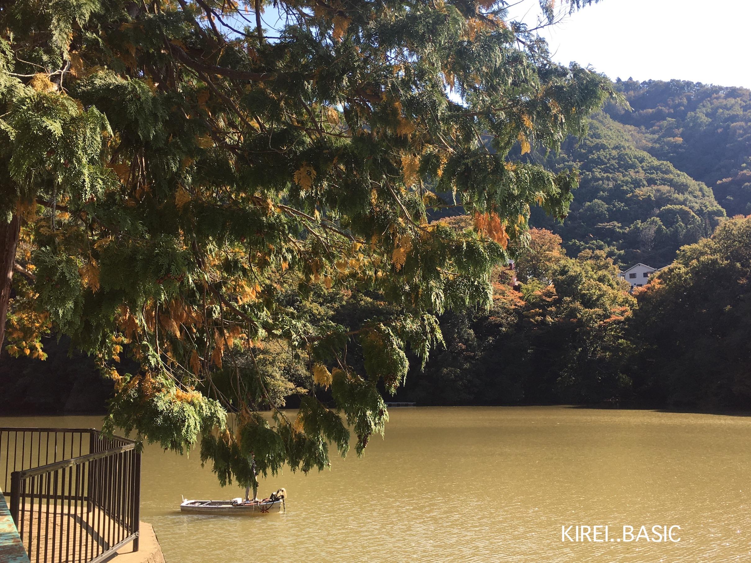 秋山川キャンプ場は眺めがいい